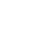 Local Branch Limited
